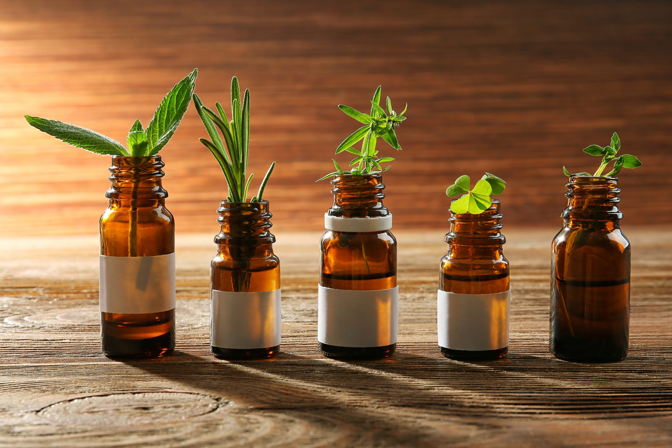 What's The Right Dosage For Dogs Of CBD Oil?