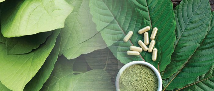 Purchase Kratom Licensed Interview